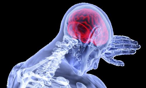 Безплатните прегледи за заболявания на гръбнака и главния мозък продължават и през май
